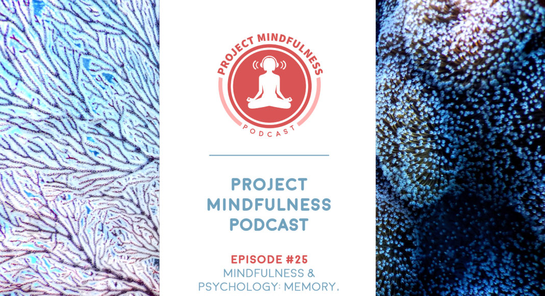 Episode 25 of the Project Mindfulness Podcast with Robert J. Goodman