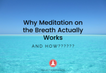 Why Meditation on the Breath Actually Works - Project Mindfulness